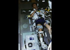 Life and Microgravity Spacelab (LMS) payload operations, Torque-Velocity Dynamometer (TVD) leg muscle testing