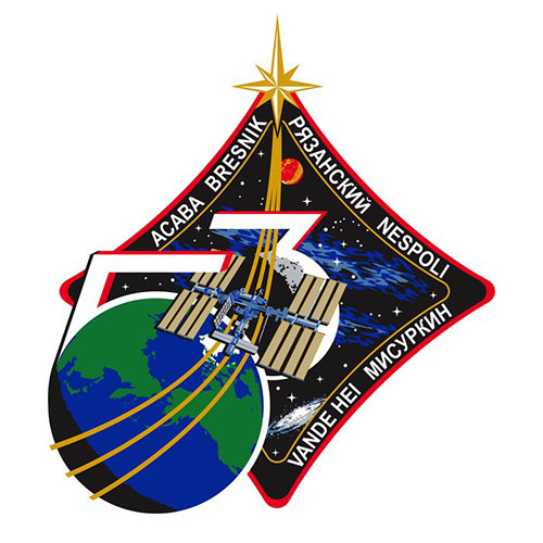 Expedition 53 Crew Patch