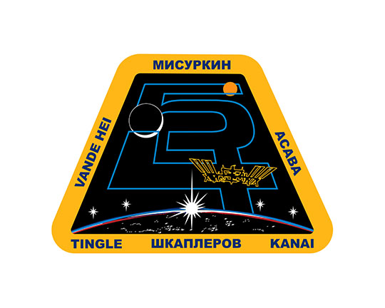 Expedition 54 Crew Patch
