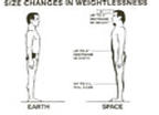 Size Changes in Weightlessness